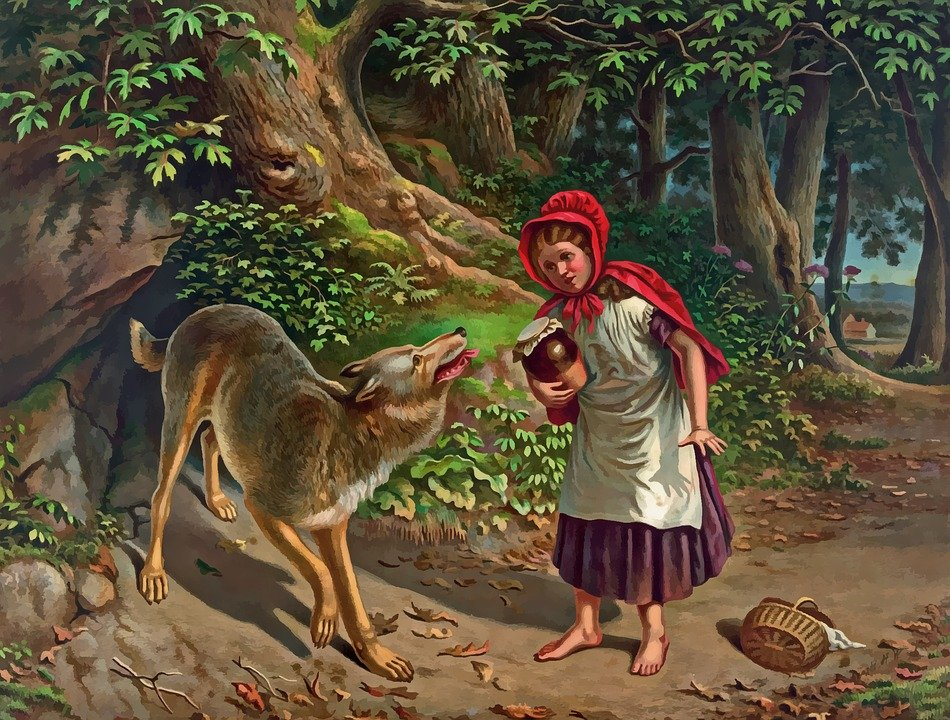 Little Red Riding Hood is talking to the bad wolf in the wood